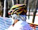 Helmet bling 		CREDITS:  		TITLE: 2013 Cyclo-cross World Championships 		COPYRIGHT: CANADIANCYCLIST