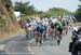 Peloton on the descent 		CREDITS:  		TITLE: 2013 Tour de France 		COPYRIGHT: � Casey B. Gibson 2013