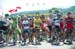 The jersey holders at the start 		CREDITS:  		TITLE: 2013 Tour de France 		COPYRIGHT: � Casey B. Gibson 2013
